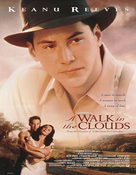 فيلم A Walk in the Clouds 1995 مترجم