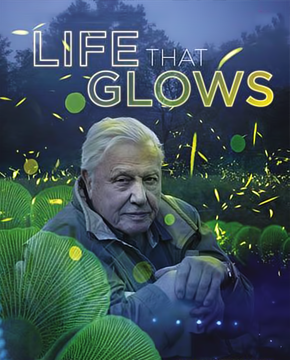فيلم Attenborough's Life That Glows 2016 مترجم
