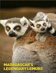 فيلم Madagascars Legendary Lemurs 2016 مدبلج