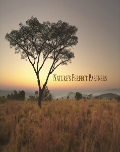 فيلم PBS: Nature's Perfect Partners 2016 مترجم